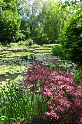 What I was Wandering: Giverny