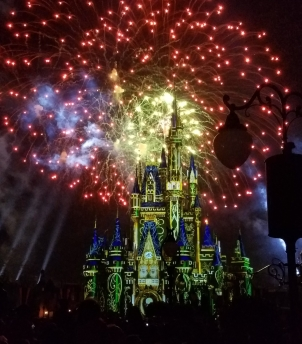 While I was Wandering: Happily Ever After at Disney